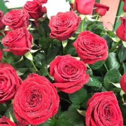 Rose Rosse Napoli