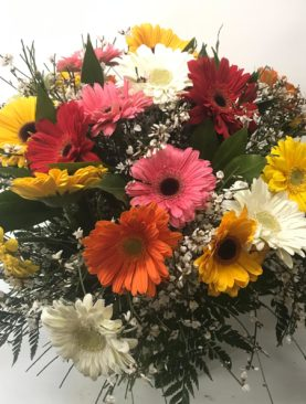 Bouquet di gerbere multicolore