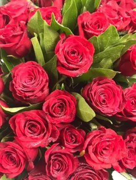 Mazzo di rose rosse (80 cm in media, a dozzina)